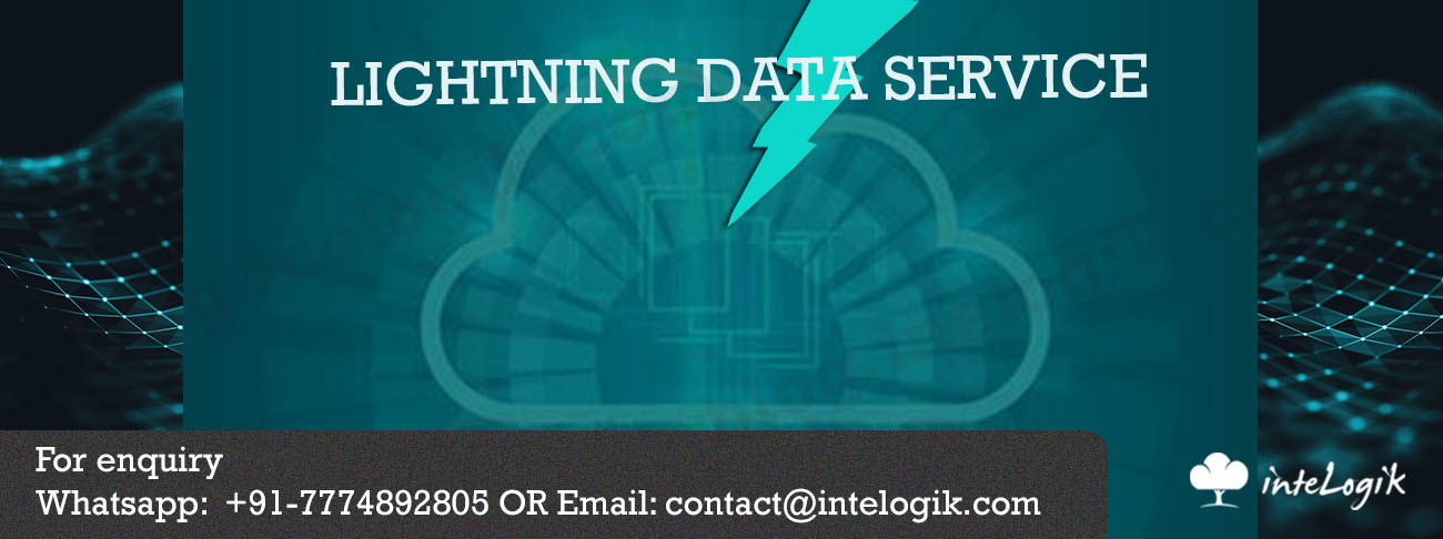 What is LIGHTNING DATA SERVICE ?